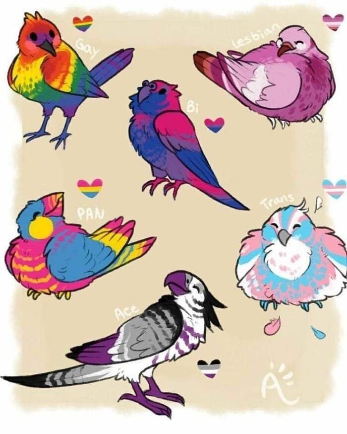 Some Queer Birbs ♡