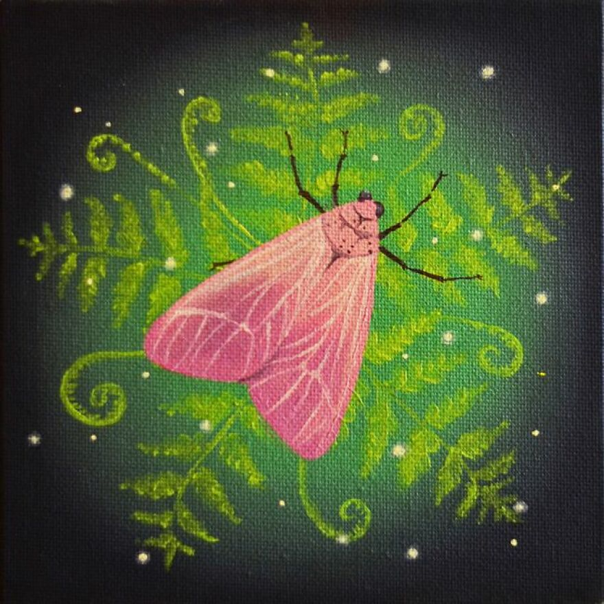 Atmospheric Moth Among The Ferns