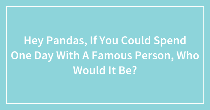 Hey Pandas, If You Could Spend One Day With A Famous Person, Who Would It Be?
