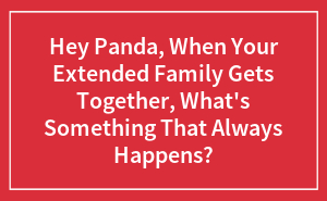 Hey Panda, When Your Extended Family Gets Together, What's Something That Always Happens?