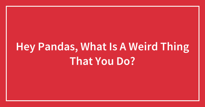 Hey Pandas, What Is A Weird Thing That You Do?