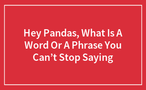 Hey Pandas, What Is A Word Or A Phrase You Can't Stop Saying