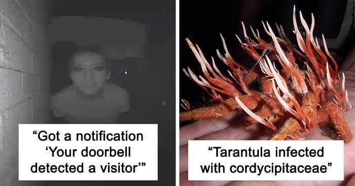 72 Times People Spotted Something Very Creepy And Had To Share It Online