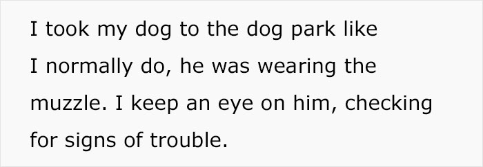 Stranger Mistakenly Tries To Liberate Guy's Muzzled Dog Due To Believing It's Animal Cruelty